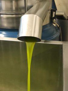 Casa Iuorio estrazione olio
