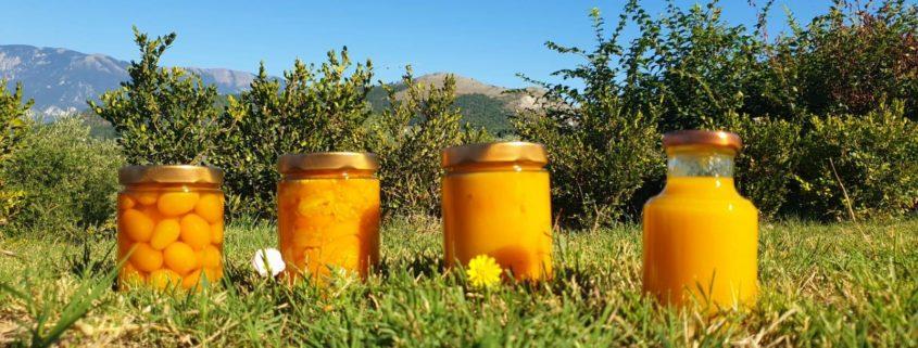 Conserve di pomodorini gialli