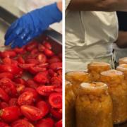 Conserve di pomodoro a pacchetelle