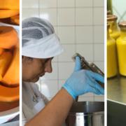 Maionese vegana preparazione in laboratorio