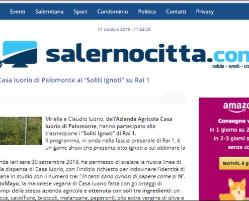 salernocitta.com