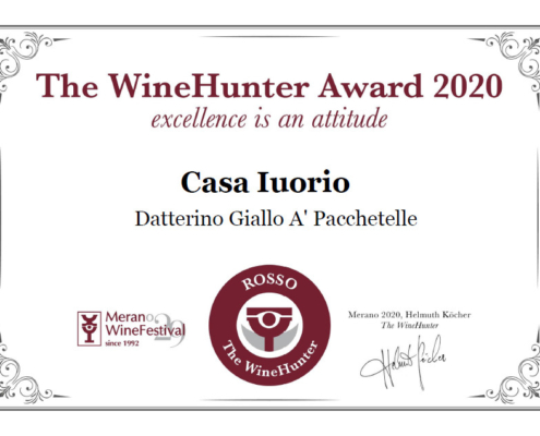 Diploma rosso datterino giallo a pacchetelle
